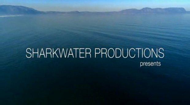 Sharkwater Teil 1