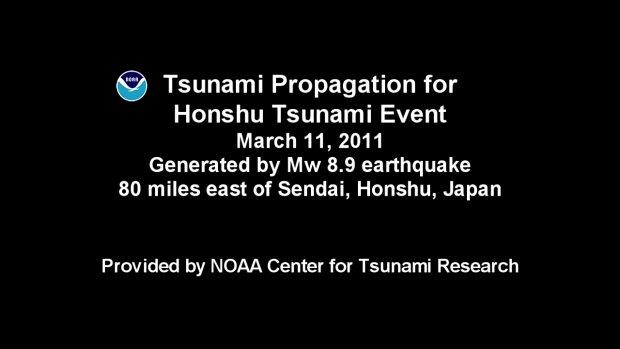 Visualisierung des Tsunami am 11.März